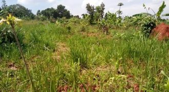 Plot for sale in Kasanje at shs 12,000,000