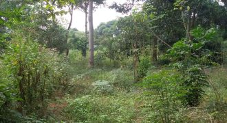 Land for sale in Entebbe Bwerenga at shs 400,000,000