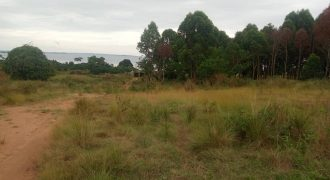 Land for sale in Lukaya Kalungu at shs 4,000,000