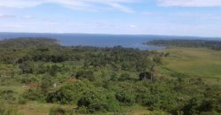 Land for sale in Mpuge Katosi Mukono at shs 17,000,000