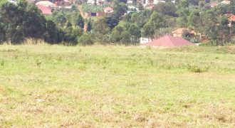 Land for sale in Kalule Bombo at shs 120,000,000