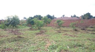 Land for sale in Lukaya at shs 25,000,000