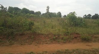 Land for sale in Kikyusa at shs 2500000