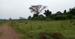 Plot for sale in Magere Kasangati at shs 150,000,000