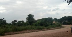 Plots for sale in Gayaza Busukuma at only 25m