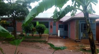 House on sale in Kawuku at UGX 50m.