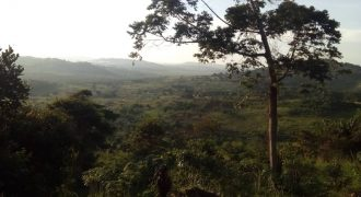 20Acres on Sale on Entebbe road, Kawuku Bukasa