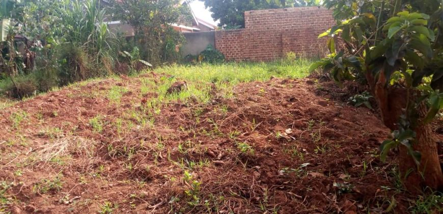 Plot for sale in Kasangati at shs 85,000,000
