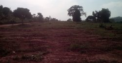 Land for sale in Bweya Kajjansi at shs 280,000,000
