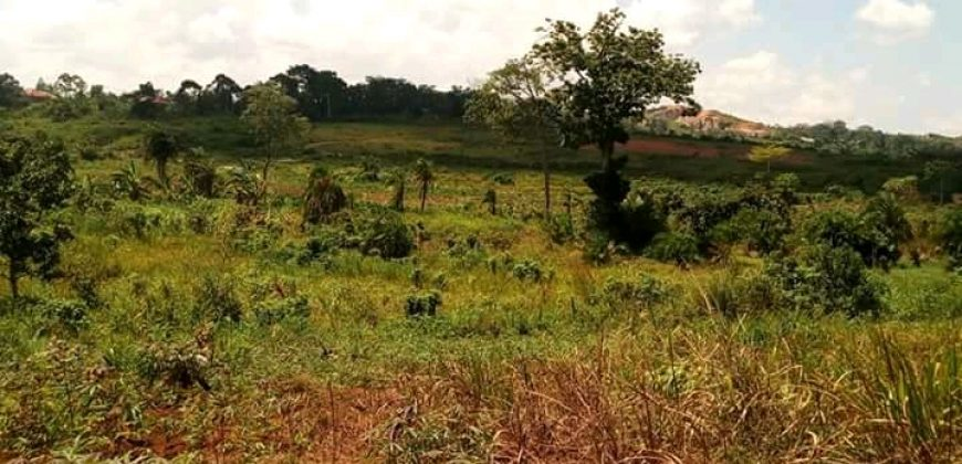 Land for sale in Kabarole at shs 160,000,000