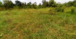 Land for sale in Mukono Mbalala at shs 250,000,000