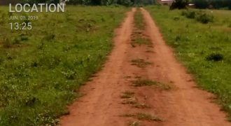 Land for sale in Kiwenda at shs 80,000,000