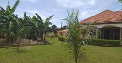 House for sale in Kyanja at shs 500,000,000
