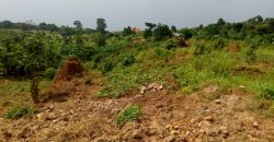 Land for sale in Bugerer Kitwe at shs 3,000,000