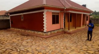Rental Units for sale in Seguku Katale at shs 170,000,000