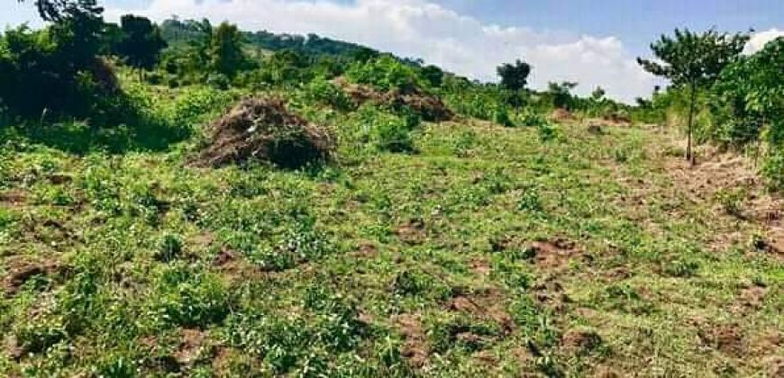 Land for sale in Sanga Semuto at shs 280,000,000