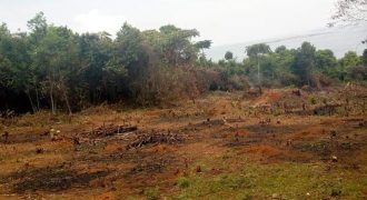 Plot for sale in Busiika Vumba at shs 65,000,000