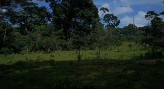 3Acres of land in Kalangala on sale