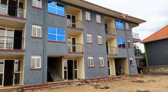 12Unit Apartment for sale in Kyanja