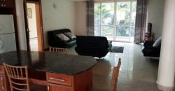 Fully furnished apartment for rent in Muyenga