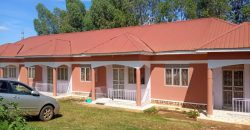 4Rental units in Kisaasi on sale