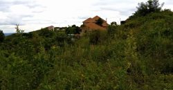 Plot for sale in Kajjansi Nakigala at shs 45,000,000