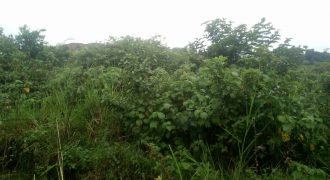 Plot for sale in Magere at shs 50,000,000