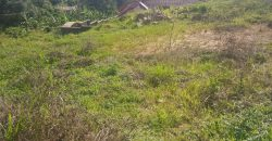 Land for sale in Wakiso at shs 70,000,000