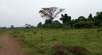 Plot for sale in Bwebaja at shs 300,000,000