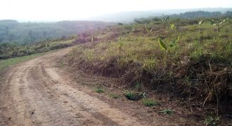 Plot for sale in Bombo at shs 9, 000,000
