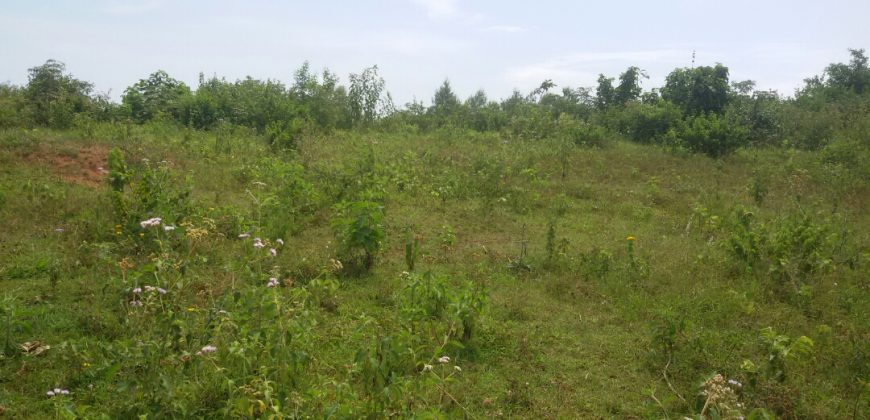 Plot for sale in Mukono at shs 60,000,000