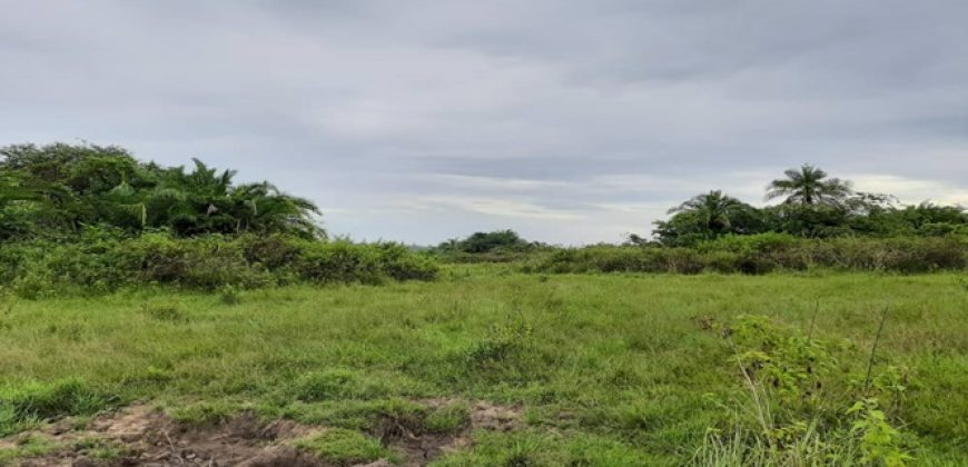 18 Acres of Farm Land for Sale in Busia