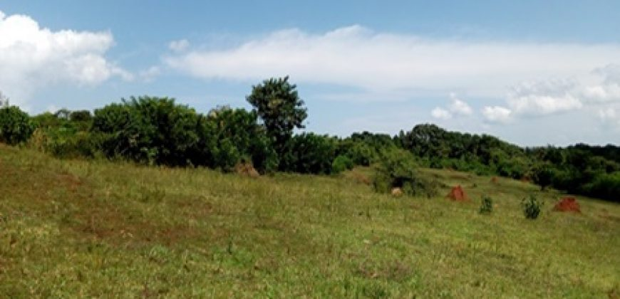 5 Acres Industrial Land