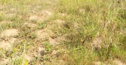 Plots for sale in Sonde Budugala at shs 30,000,000