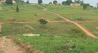 Plots for sale in Magigye at shs 44,000,000