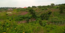 Plots for sale in Busukuma at shs 46,000,000
