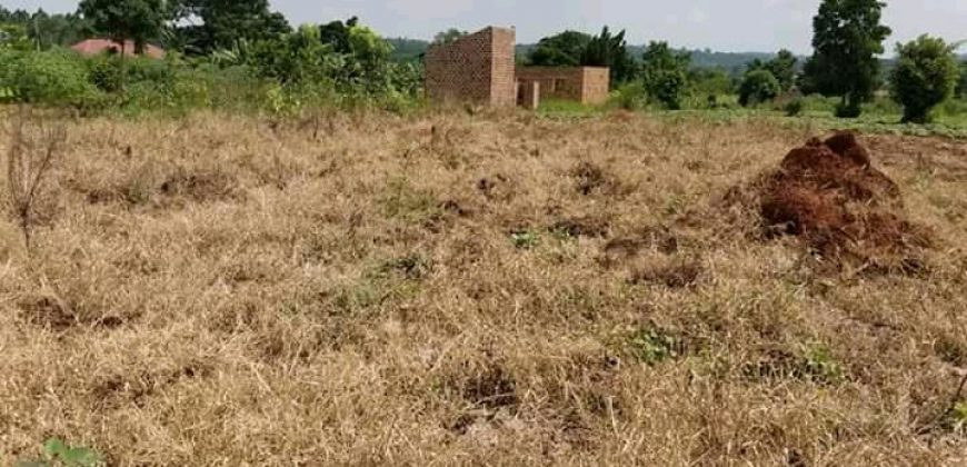 Plots for sale in Kungu at shs 250,000,000