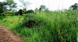 Plots for sale in Busika at shs 25,000,000