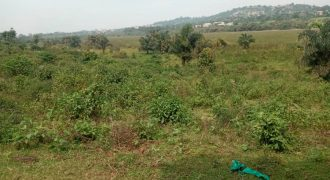 Plots for sale in Manyangwa at shs 25,000,000