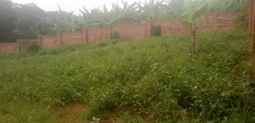 Plots for sale in Mukono at shs 50,000,000