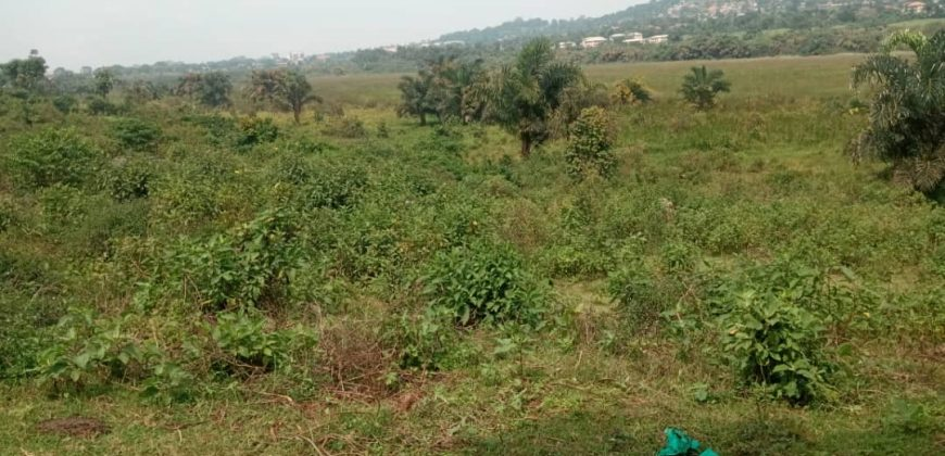 Plots for sale in Busukuma at shs 54,000,000