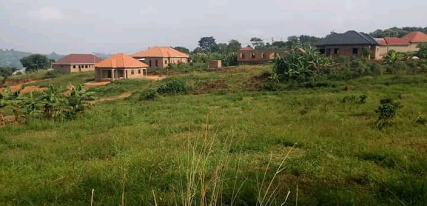 Plots for sale in Wakiso at 35,000,000