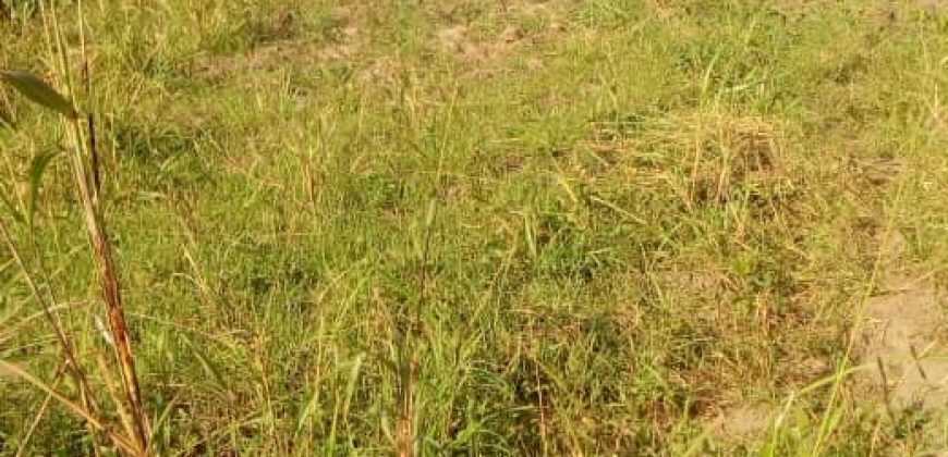 Plots for sale in Kawuku at shs 70,000,000