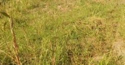 Plots for sale in Ssissa Entebbe road at shs 25,000,000