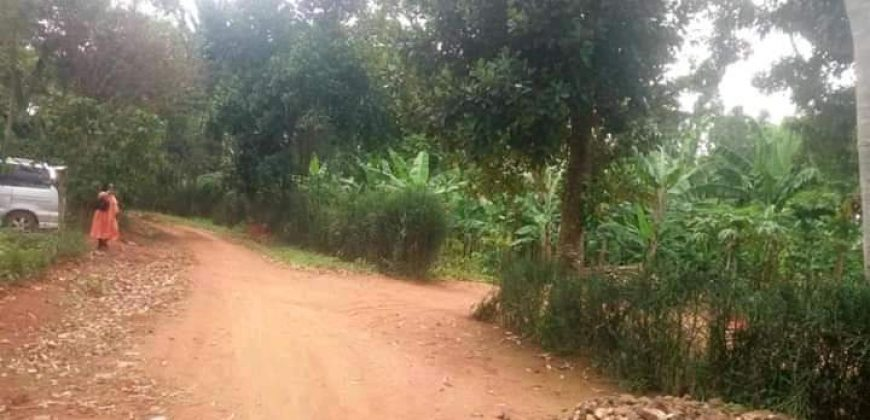 Plots for sale in Busukuma at shs 70,000,000
