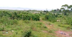 Plot for sale in Kira Kasangati at shs 140,000,000