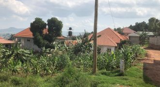 Plots for sale in Gayaza Busukuma at shs 35,000,000