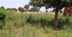 Plots for sale in Mukono Kisowera at shs 34,000,000