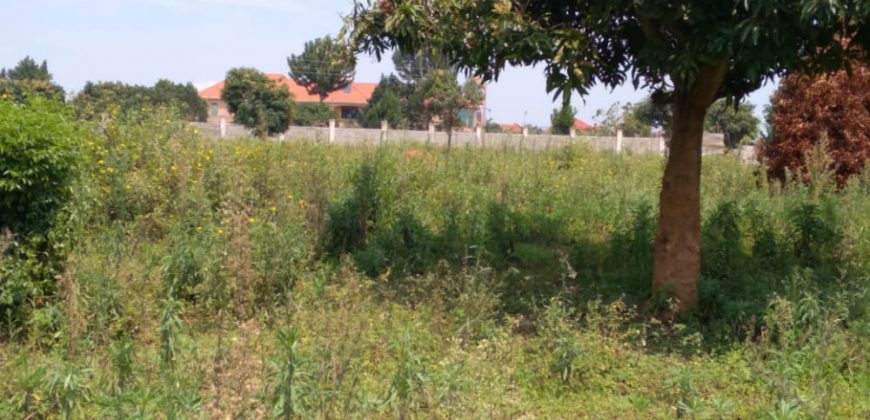 Plots for sale in Mukono at shs 25,000,000