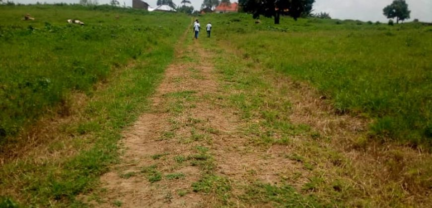 Plot for sale in Mukono at shs 60,000,0000